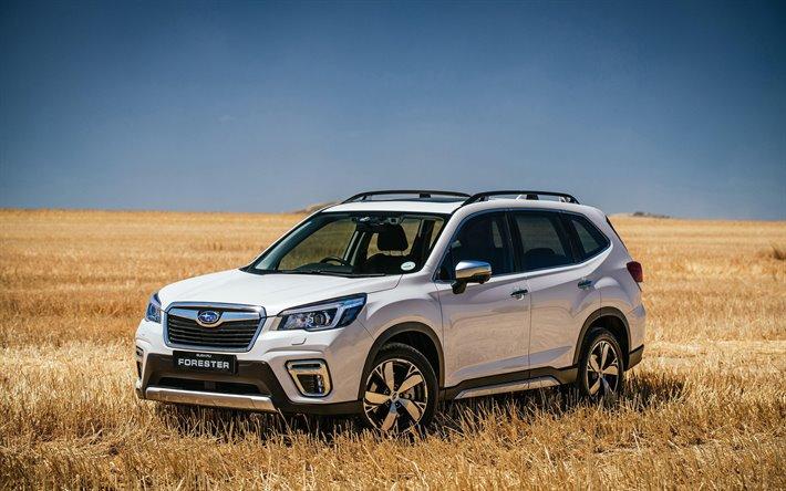 Läs mer om artikeln Kampanj Subaru Forester Spara 45,000:-